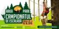 Campionatul de escalada, editia a 3-a / Paltinis 2015