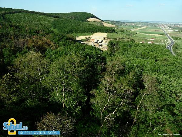 Autostrada A1 Orastie - Sibiu / Defrisare pt tunelul de la Km 72