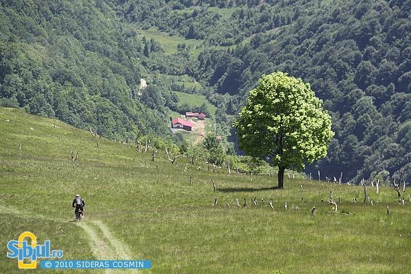 2-dark-dog-enduro-sibiu-2010-ziua-3-41136903.jpg