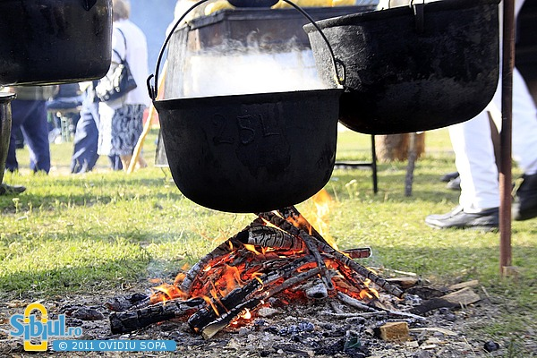 """Festivalul \""""Bujorul de munte\"""" Gura Raului 2011"""