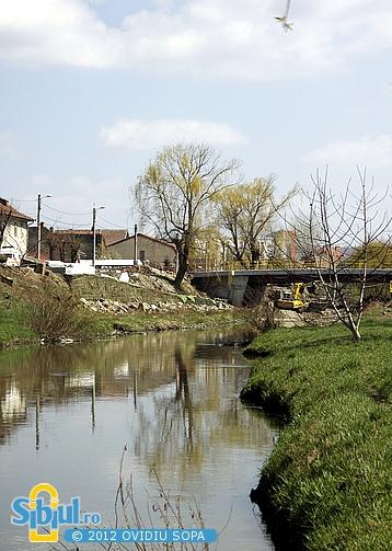 Lucrari la noul pod peste Raul Cibin (aprilie 2012)