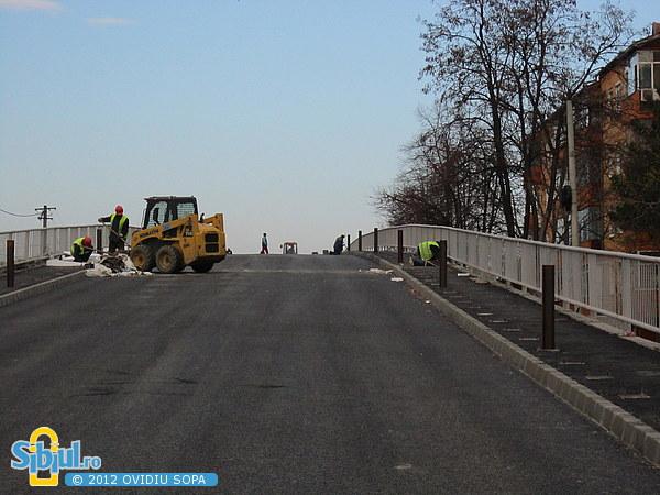 """Viaductul \""""Gara Mica\"""" 20 noiembrie 2012"""