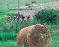 Turul Ciclist al Sibiului 2020 / Etapa 2