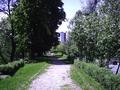 Prin parc