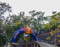 Red Bull Romaniacs 2019 - Prolog