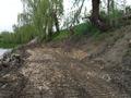 Aleile de pe marginea raului Cibin