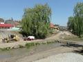 Aleile de pe marginea raului Cibin / 19 mai 2011