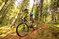 Campionatul National de Mountain Bike Cross Country / Paltinis 2013