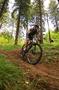 Campionatul National de Mountain Bike Cross Country / Paltinis 2013