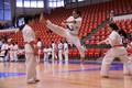Campionatului National de karate Kata