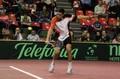 Cupa Davis: Victor Hanescu