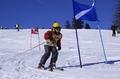 Cupa de Ski Arena Copiilor Etapa 1 - Paltinis 2012