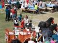 Festivalul Bujorului de Munte 2008