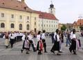 Parada MaiFest 2009