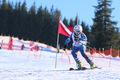 Sibiu Winter Challenge 2013