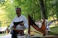 Instrumente muzicale de Cernatescu Miron