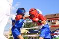 Turneul de box Fratii Negrea - Sibiu 2009