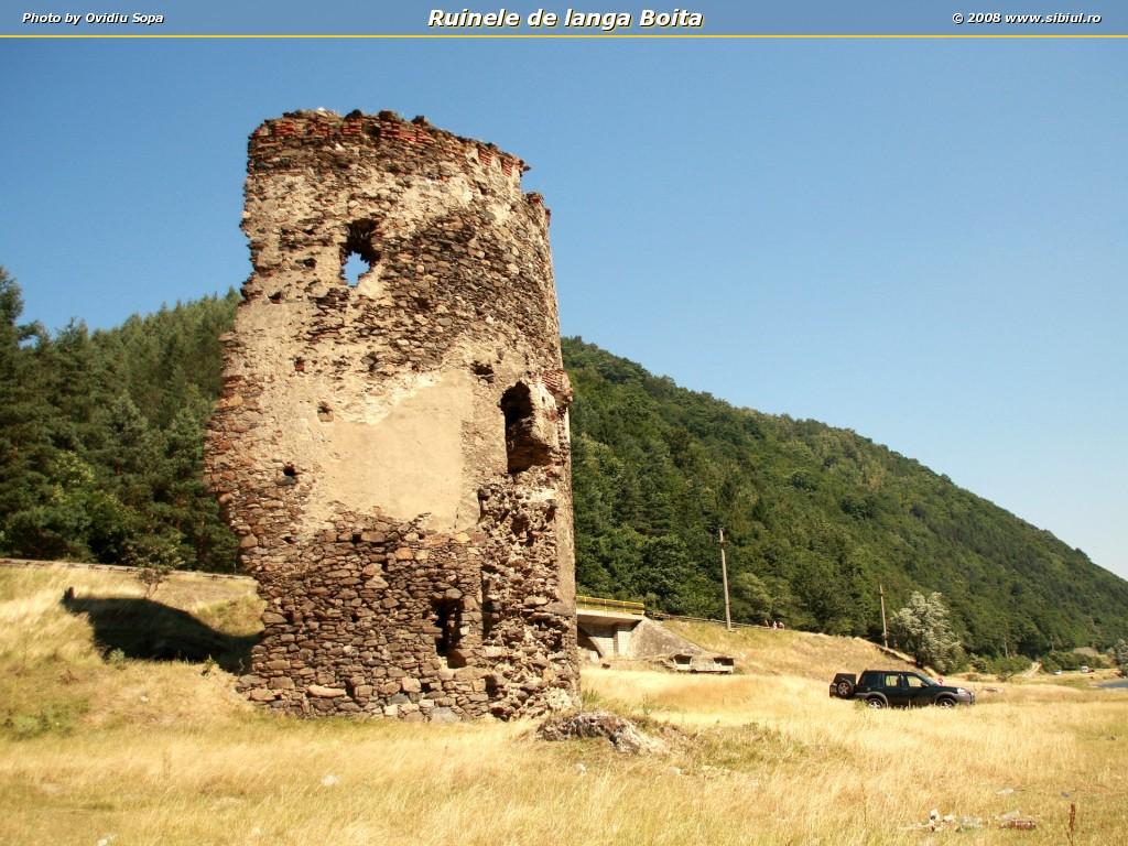 Ruinele de langa Boita