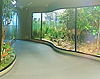 Muzeul de Istorie Naturala