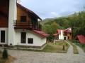 Vile pe Valea Avrigului