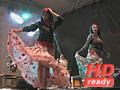 FITS 2009 / Fanfara de la Cozmesti
