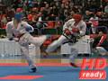 Campionatul National de Taekwondo Juniori si Seniori Sibiu 2010 M#3