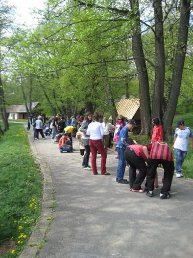 Ziua medilui in muzeul satului Sibiu