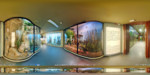 Tur Virtual in Muzeul de Istorie Naturala Sibiu
