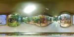 Muzeul de Istorie Naturala 4